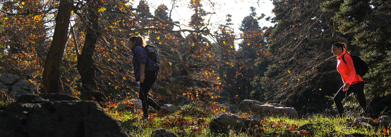 escape-plans-hiking